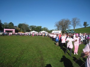 Run for the Cure 2015 -4A